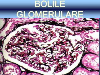 BOLILE GLOMERULARE