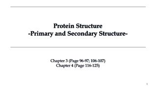 Protein  Structure -Primary and Secondary Structure-