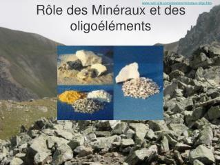 Rôle des Minéraux et des oligoéléments