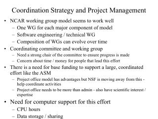 Coordination Strategy and Project Management