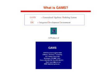 What is GAMS?