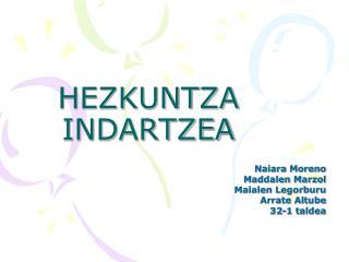 HEZKUNTZA INDARTZEA