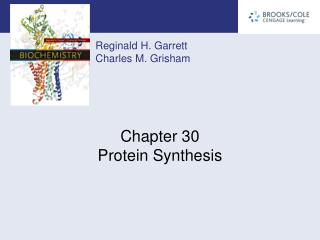 Chapter 30 Protein Synthesis