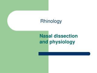Rhinology