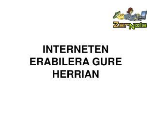 INTERNETEN ERABILERA GURE HERRIAN