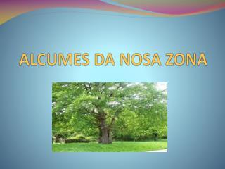 ALCUMES DA NOSA ZONA