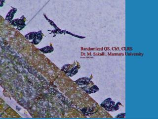 Randomized QS. Ch5, CLRS  Dr. M. Sakalli, Marmara University Picture 2006, RPI