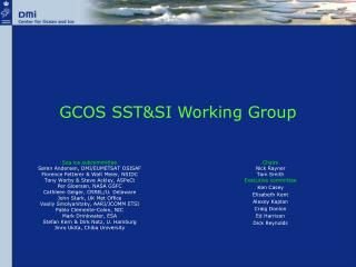 GCOS SST&SI Working Group