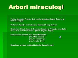 Arbori miraculoşi