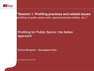 Profiling for Public Sector: the Italian approach Enrica Morganti – Giuseppina Sola