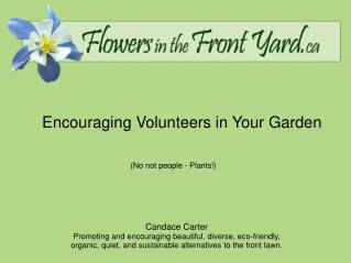 Encouraging Volunteers in Your Garden