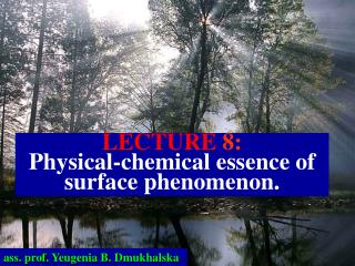 LECTURE  8: Physical-chemical essence of surface phenomenon.
