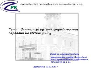 Zespół ds. organizacji systemu