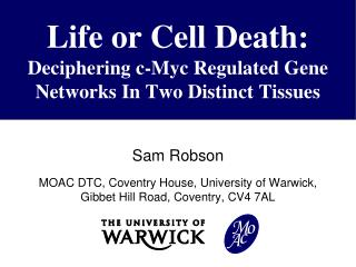 Life or Cell Death: Deciphering c- Myc Regulated Gene Networks In Two Distinct Tissues