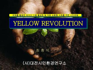 YELLOW REVOLUTION