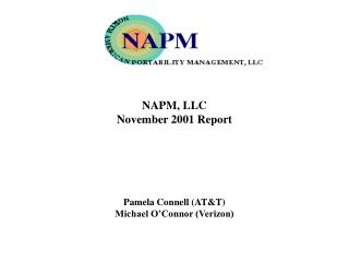 NAPM, LLC  November 2001 Report Pamela Connell (AT&T) Michael O'Connor (Verizon)