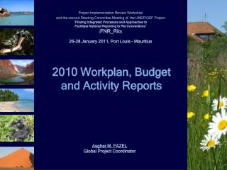 2010 Workplan, Budget  and Activity Reports