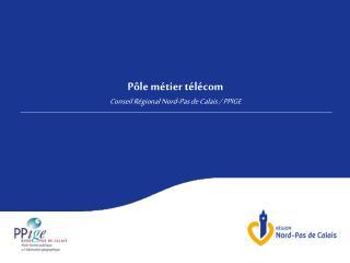 P�le m�tier t�l�com Conseil R�gional Nord-Pas de Calais / PPIGE