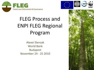 FLEG Process and  ENPI FLEG Regional  Program