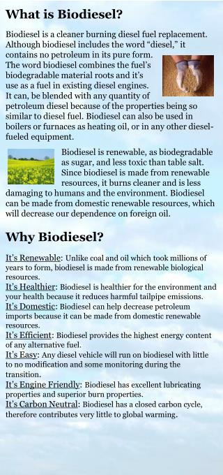 Can I Use Biodiesel in My Existing Diesel Engine?