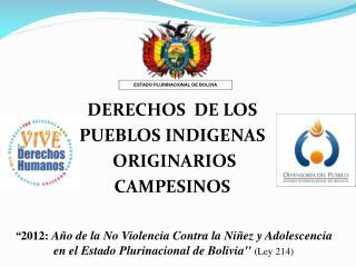 DERECHOS  DE LOS   PUEBLOS INDIGENAS  ORIGINARIOS CAMPESINOS
