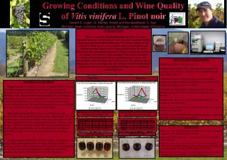 Growing Conditions and Wine Quality  of  Vitis vinifera  L. Pinot noir