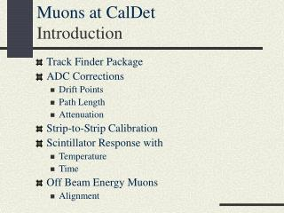 Muons at CalDet Introduction
