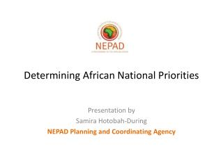 Determining African National Priorities
