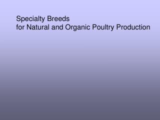 Specialty Breeds  for Natural and Organic Poultry Production