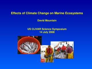 Effects of Climate Change on Marine Ecosystems David Mountain US CLIVAR Science Symposium