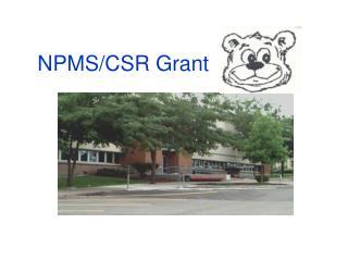 NPMS/CSR Grant