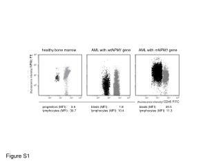 (fluorescence intensity)  CD45 FITC
