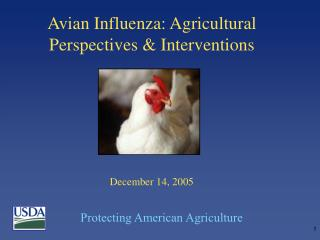 Avian Influenza: Agricultural Perspectives & Interventions