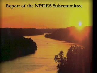 Report of the NPDES Subcommittee