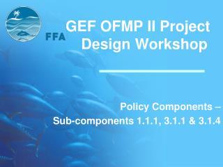 GEF OFMP II Project Design Workshop
