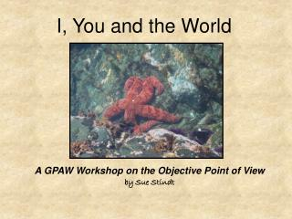 A GPAW Workshop on the Objective Point of View by Sue Stindt