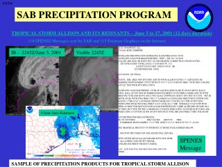 SAMPLE OF PRECIPITATION PRODUCTS FOR TROPICAL STORM ALLISON