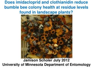 Jamison Scholer July 2012 University of Minnesota Department of Entomology