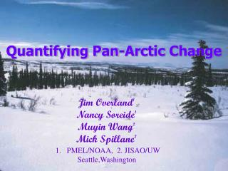 Quantifying Pan-Arctic Change