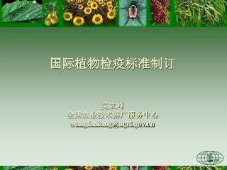 国际植物检疫标准制订 吴立峰 全国农业技术推广服务中心 wangfuxiang@agri