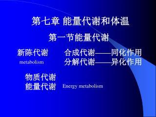 第七章 能量代谢和体温