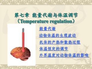 第七章 能量代谢与体温调节 ( Temperature regulation )