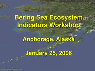 Bering Sea Ecosystem Indicators Workshop Anchorage, Alaska January 25, 2006