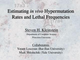 Estimating  in vivo  Hypermutation Rates and Lethal Frequencies