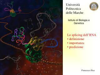 Università Politecnica  delle Marche Istituto di Biologia e Genetica