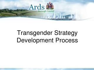 Transgender Strategy Development Process