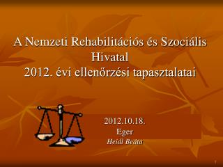 A Nemzeti Rehabilitációs és Szociális Hivatal  2012. évi ellenőrzési tapasztalatai
