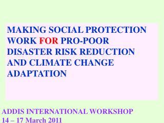 ADDIS INTERNATIONAL WORKSHOP  14 – 17 March 2011