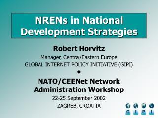 NRENs in National Development Strategies