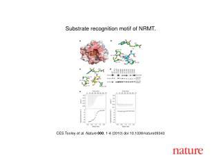 CES Tooley  et al .  Nature 000 ,  1 - 4  (2010) doi:10.1038/nature0 9343